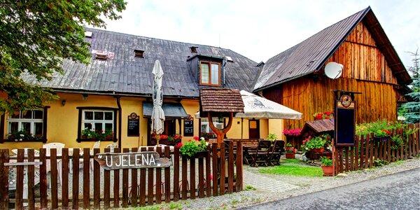 Stylová chata v Jeseníkách s jídlem a saunou