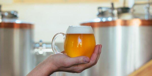 Prohlídka pivovaru s degustací a pivem na doma