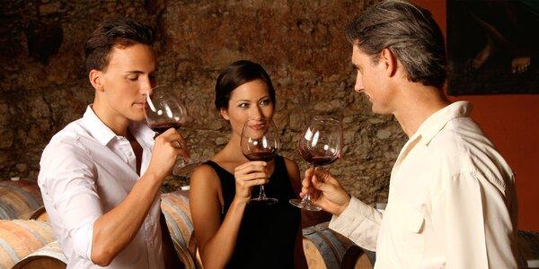 Degustace excelentních či medailovaných vín pro 2