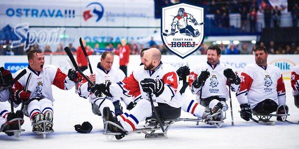 Příspěvek na nábor, výbavu i trénink para hokejistů