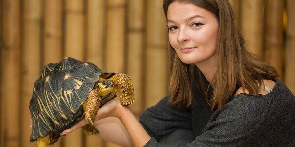 VIP návštěva želv pro 1 či 2 os. v Krokodýlí Zoo