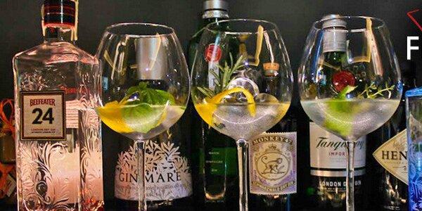 Degustační menu 6 prémiových ginů a 3 toniků