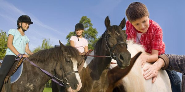 Vyjížďky na koni. Poníci pro děti