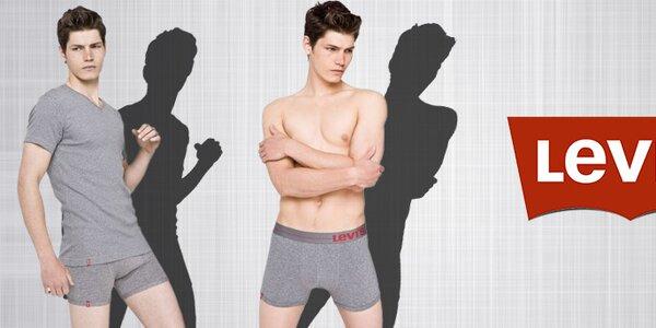 Pánské spodní prádlo, ponožky a trička Levi's