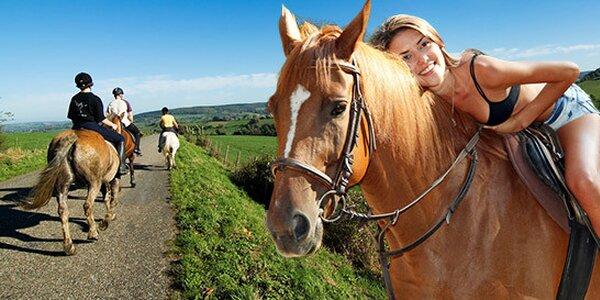 Hodinová vyjížďka na koni nedaleko Benešova
