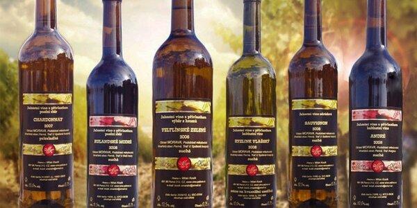 6 lahví vína z rodinného vinařství