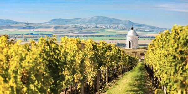 Třídenní vinařský pobyt pro dva v Bořeticích