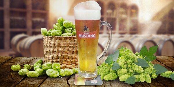 0,5 l piva Ostravar Mustang 11°