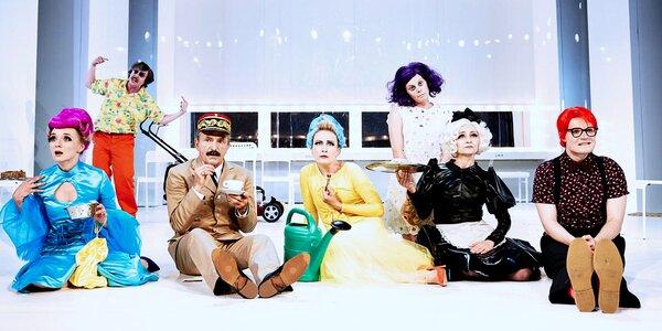 Vstup na libovolné představení Divadla v Dlouhé