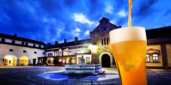 Zážitková prohlídka pivovaru Regent pro partu