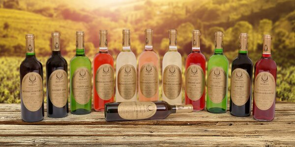 6 moravských vín Miroslav Hlávka