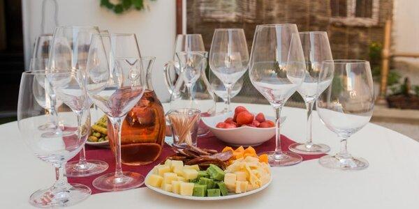 Degustace prémiových vín, tuzemských i ze světa