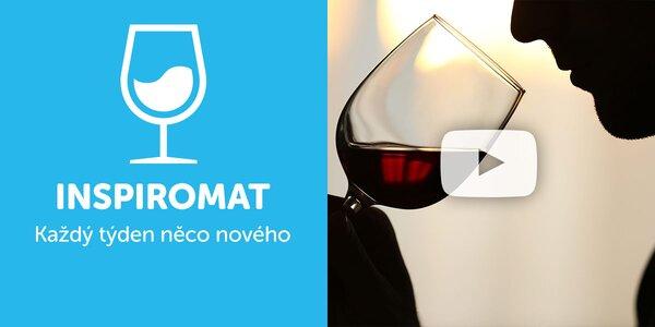 Jak vybírat víno k jídlu a jako dárek?