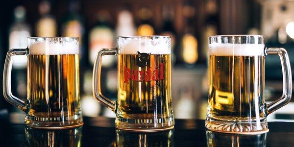Pivní osvěžení: 3× 0,5 l chlazeného Pardála 11°