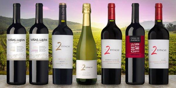 Kvalitní argentinská vína z oblasti pod Andami