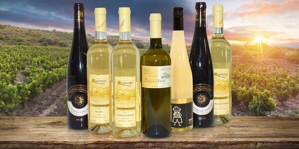 Kouzlo Moravy: box 6 kvalitních vín
