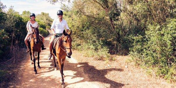 Jízda na koni po památkách Přírodního parku Džbán
