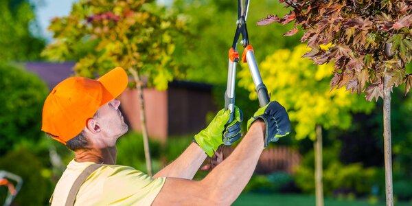 Údržba zahrady: nový střih nejen pro váš trávník