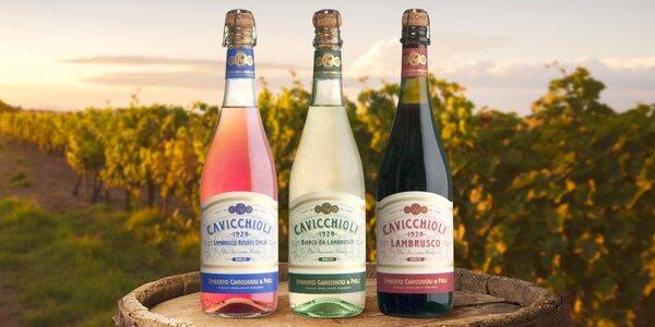 Léto s bublinkami: Sety svěžího vína Lambrusco