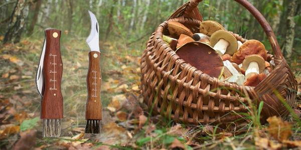 Nůž pro houbaře s dřevěnou rukojetí a kartáčkem