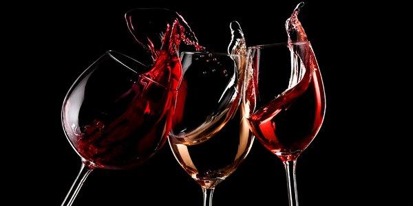 Degustace vín a zážitkový program ve tmě tmoucí