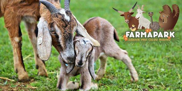 Rodinná vstupenka do Farmaparku Soběhrdy