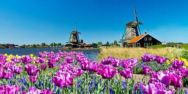 Duben v Holandsku: letenka, ubytování i průvodce