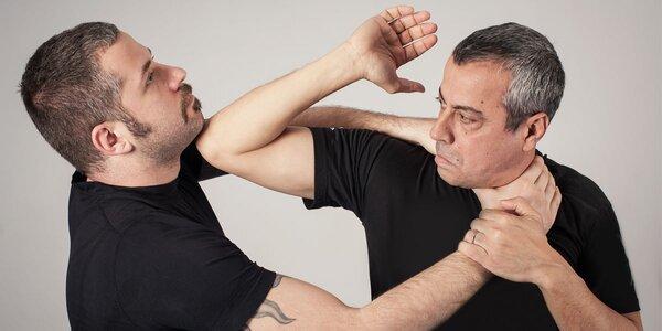 Poznejte účinné izraelské bojové umění Kapap