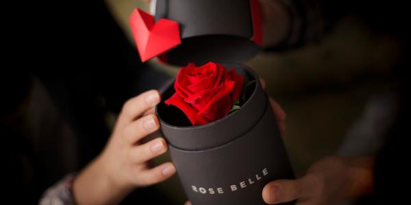 Elegantní box plný lásky s růží, která opravdu vydrží