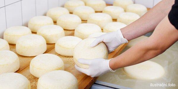 Víkendový kurz domácí výroby sýrů + receptury