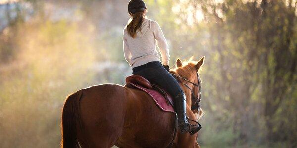60minutová vyjížďka na koni v přírodě