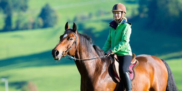 60 minut v sedle: jízda na koni v JK Caballero