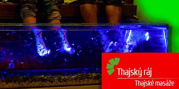 Příjemný relax s rybkami Garra Rufa v Thajském ráji