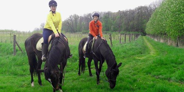 Jízda na koni a péče o něj v jezdeckém klubu
