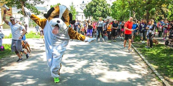 Pomoc pejskům: Startovné na běh pro psí útulky