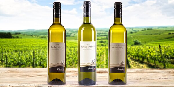 6 láhví vína: Ryzlink rýnský i Sylvánské zelené