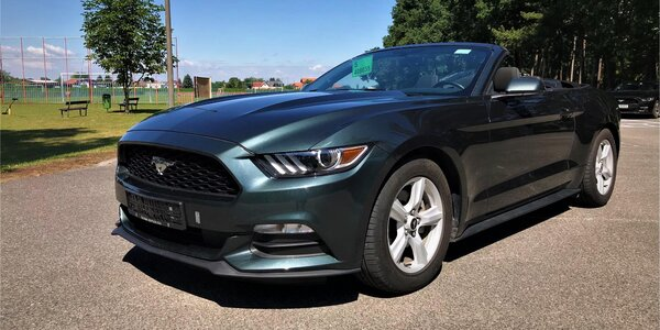 Zapůjčení Ford Mustang kabrio na den i víkend