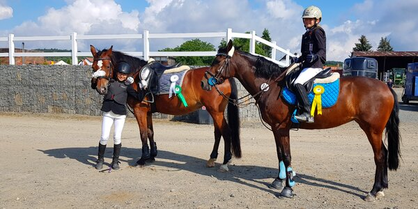 Jízda snů: osedlejte si koně či dítěti poníka