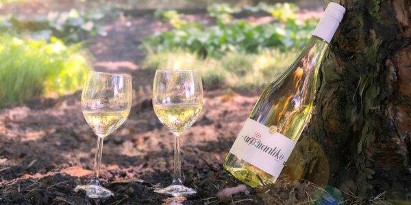 6 láhví polosladkého perlivého vína Aromantico