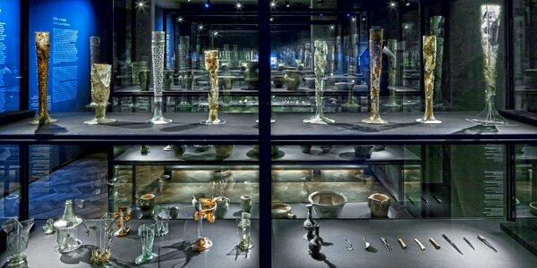 Vstupenka do muzea Dům U Zlatého prstenu