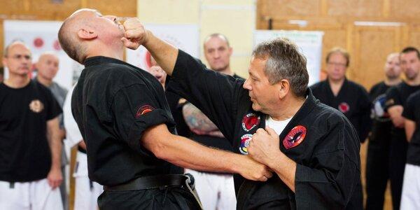 Hodinová lekce karate pro muže, ženy i děti
