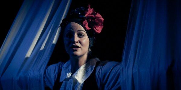 Vstupenka na divadelní představení Frida K.
