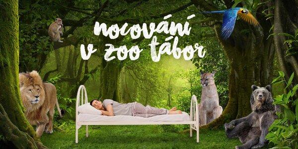 Noc v táborské zoo pro 3 osoby včetně vstupenek
