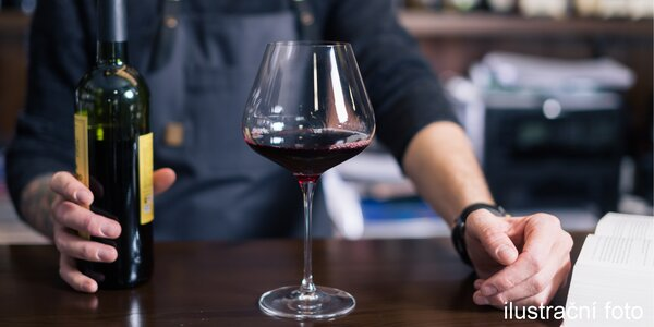 Vinný kurz nebo gurmánské snoubení vína s jídlem