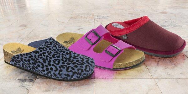 Dámská domácí obuv Scholl: pantofle i bačkory
