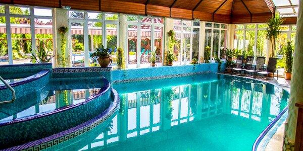 Luxusní wellness pobyt s polopenzí u Dunaje