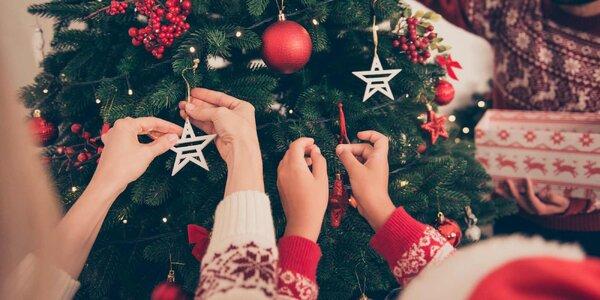 Umělý vánoční stromek: Jedle i borovice