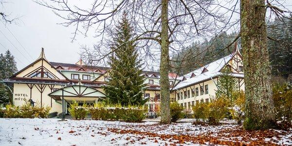 Zima pod Tatrami: wellness i polopenze pro 2