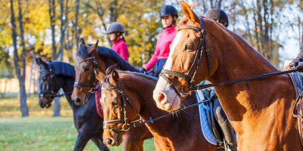 Hodinová vyjížďka na koni pro jednoho nebo dva
