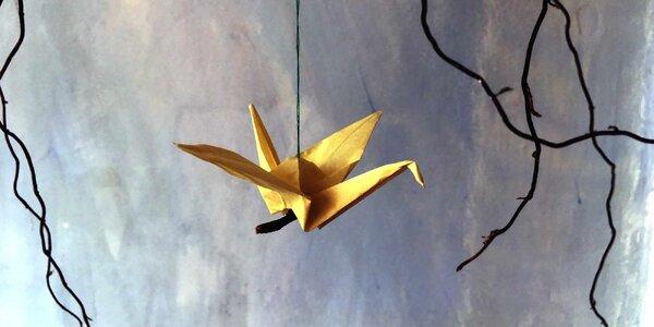 Origami workshop pro 1 či pro 2 v Pragovce